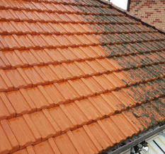 roof pressure cleaning Pines Forest